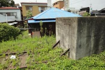20110818_karasuyama08.JPG