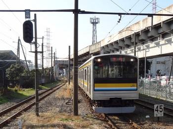 20111229_Tsurumi06.JPG