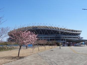 20120407_Kashima10.JPG