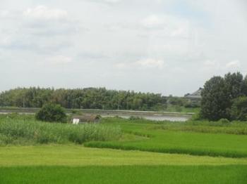 20120812_Kansai08.jpg