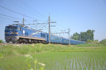 20140601_Hokutosei.jpg