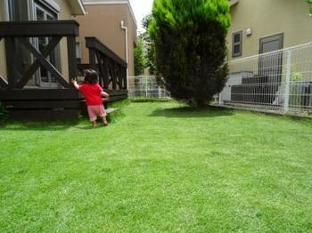 20140706_Lawn01.jpg