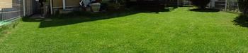 20140712_Lawn01.jpg
