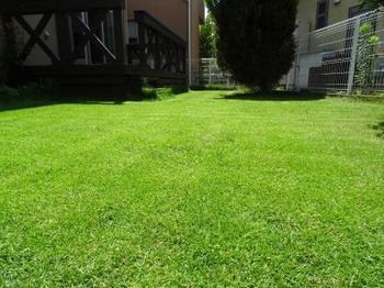 20140712_Lawn02.jpg