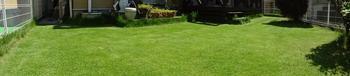 20140802_Lawn03.jpg