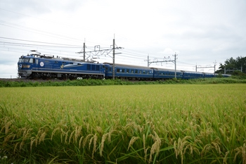 20140831_Hokutosei.jpg