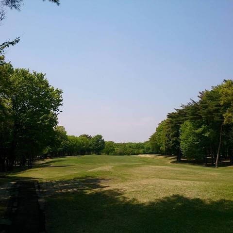 20170429_Golf.jpg