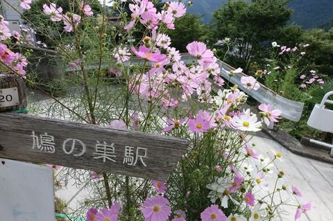 20170930_Kaanori3.JPG