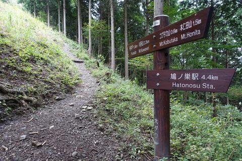 20170930_Kaanori5.JPG