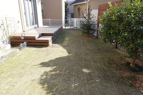 20190223_Lawn1.jpg